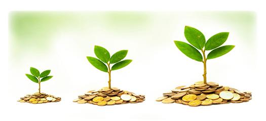 Формирование финансовой грамотности обучающихся 5-9 классов с учетом ФГОС
