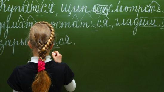 Формирование и оценивание метапредметных и личностных образовательных результатов учащихся в процессе обучения русскому языку и литературе