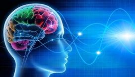 Вебинар «Эффективные методы тренировки памяти. Формула памяти»