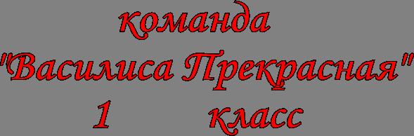 """команда   """"Василиса Прекрасная"""" 1         класс"""