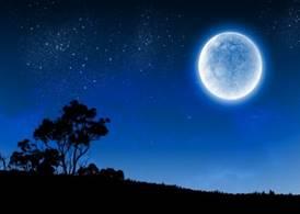 Китайцы анонсировали строительство на луне | СтройОбзор