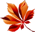 http://allday1.com/uploads/posts/2015-08/1440423127_various-leaves-4-19.png