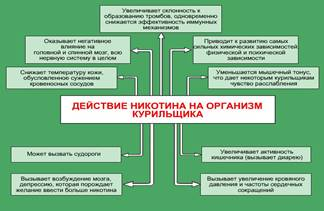 http://www.kbzhd.ru/upload/learning/img/Les10/87urtdgfc.JPG