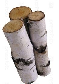 "Создать мем ""birch, полено, дрова береза"" - Картинки - Meme ..."