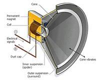Cutout of a loudspeaker