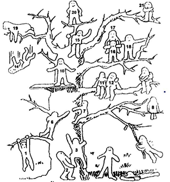 дерево_рефлексия.jpg