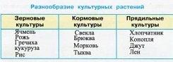 http://cdn01.ru/files/users/images/2d/c5/2dc5c2296a841025f2c9753e8823b6ab.jpg