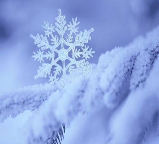 http://www.rasse1.com/wp-content/uploads/2013/12/снежинка.jpg