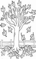 Joshua Tree Coloring Page Worksheet Educationcom GTA 5 Wallpaper