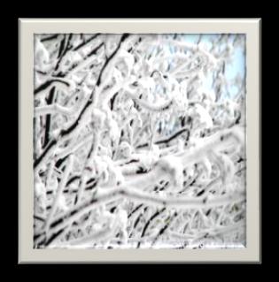 http://sinus.vl.ru/mtravel/snow/photo/sneg109.jpg