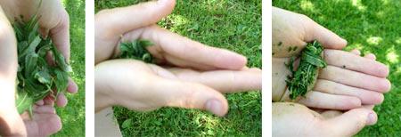 http://img1.liveinternet.ru/images/attach/c/6/89/742/89742099_2697452_4.jpg