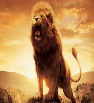 К чему снится лев женщине или мужчине