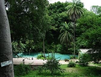 https://hotels.ng/places/media/poi/16/yankari.jpg-16-56b7da744aaad.jpg?w=500