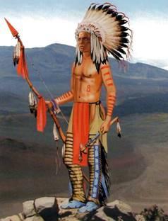 http://blog.archerybow.com.ua/wp-content/uploads/2011/12/image57.jpg