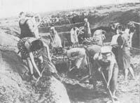 Ленинградцы на строительстве оборонительных укреплений. Июль 1941 г.