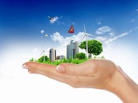 Экология и ее законы