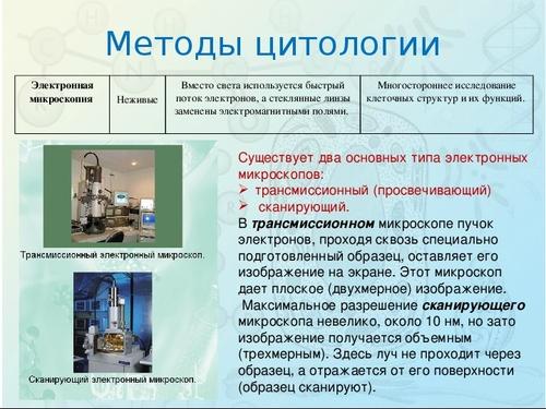 """Презентация по биологии """"Методы цитологии. Клеточная теория"""" - Знанио"""
