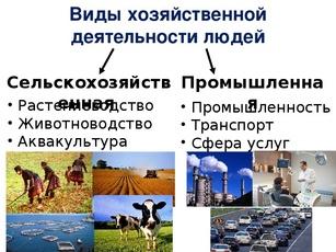 Хозяйственная деятельность людей pptx Презентация на тему  Презентация на тему Хозяйственная деятельность людей Городское и сельское население 7