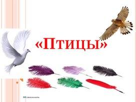 "Презентация на тему: "" Птицы"""