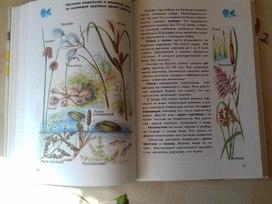 Растения.атлас