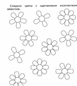 Найди цветы с одинаковым количеством лепестков
