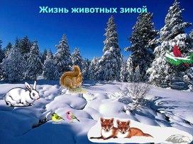 """""""Жизнь животных зимой"""""""