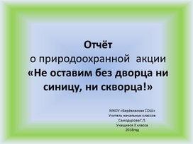 Презентация. Отчёт по природоохранной  акции «Не оставим без дворца ни синицу, ни скворца!»