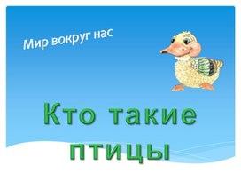 Презентация по окружающему миру - Кто такие птицы.