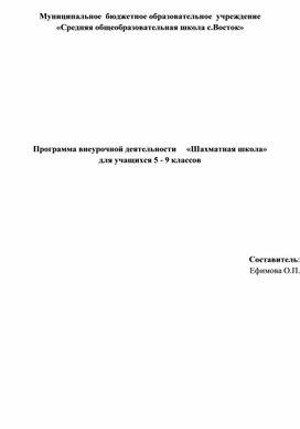"""Рабочая программа """"Шахматная школа"""""""
