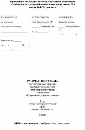 """Рабочая программа """"Огневая подготовка"""""""
