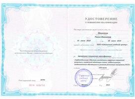 Удостоверение о повышении квалификации. Регистрационный номер 26701. Москва, 2019 г.