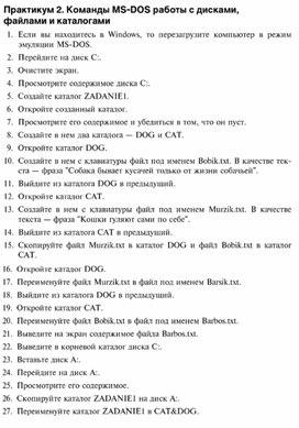 Практикум 2. Команды MS - DOS работы с дисками, файлами и каталогами