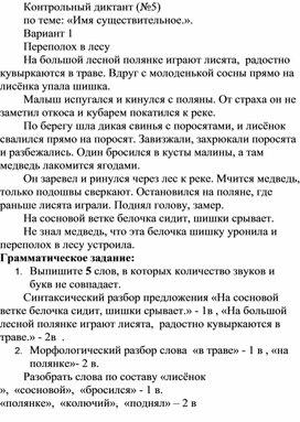 """Диктанты по теме """"Имя существительное"""", 5 класс"""