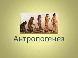 """Разработка урока """"Эволюционное развитие человека """" 11 класс"""