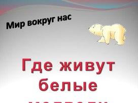 """Презентация по окружающему миру 1 класс """"Где живут белые медведи"""""""