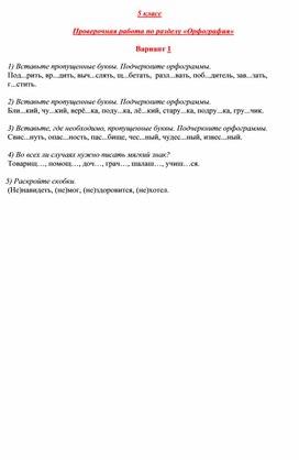 Проверочная работа по разделу Орфография (5 класс, 2 варианта)