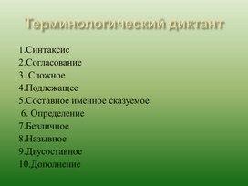"""Урок по русскому языку """"Обособление приложений"""" ( 1 курс СПО, 10 класс)"""