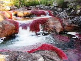 """"""" Самая красивая река""""Подборка иллюстративного материала для внеклассного мероприятия , посвященного экологическим проблемам в мире """""""