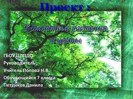 Proekt_komnatnye_rasteniya_i_tsvety