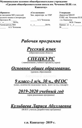 Спецкурс Русский язык 9класс