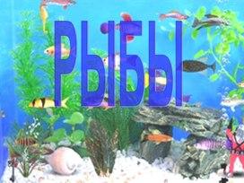 """Урок биологии """"Внешнее строение рыб"""""""