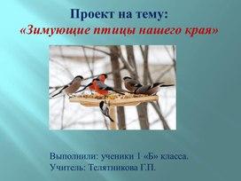 «Зимующие птицы нашего края»