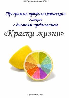 """Программа профилактической смены """"Краски жизни"""""""