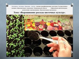 Тема: «Выращивание рассады цветочных культур»