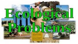 Презентация Экологическая проблема мира