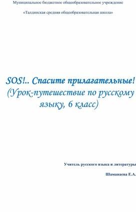 """Урок русского языка в 6 классе Имя прилагательное"""""""