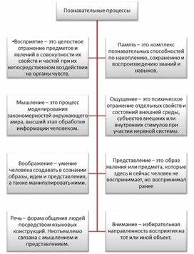 Познавательные процессы в схемах