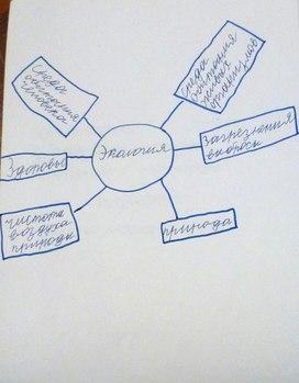 """Приложение №3 к проекту """"Что такое экология?"""" (2 класс, """"Я - исследователь"""", внеурочная деятельность)"""