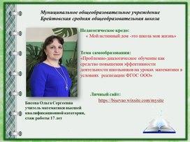 Публичная презентация результатов педагогической деятельности за 2016-2019 гг.