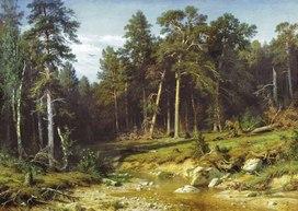 Приложение 7 к Берегите лес